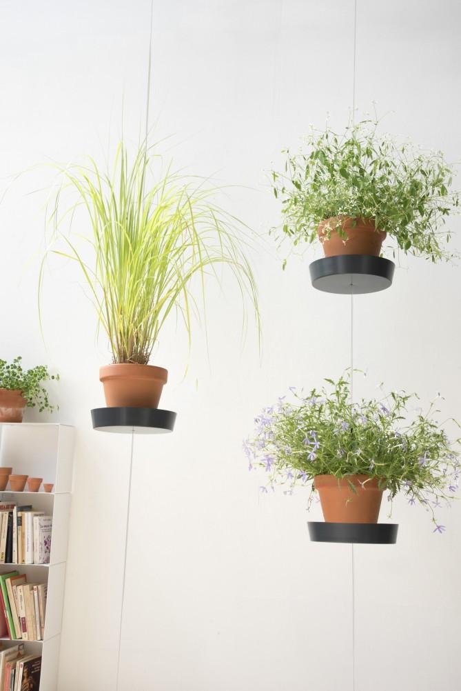 support-plante-suspendu-1
